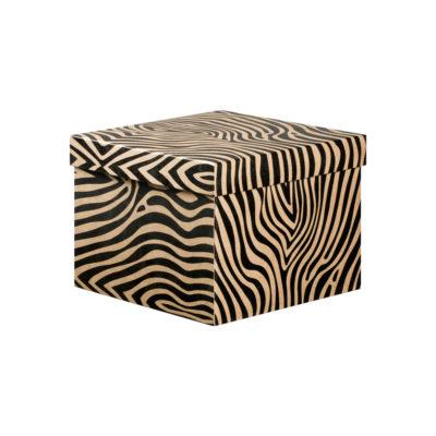 Deep Boxes